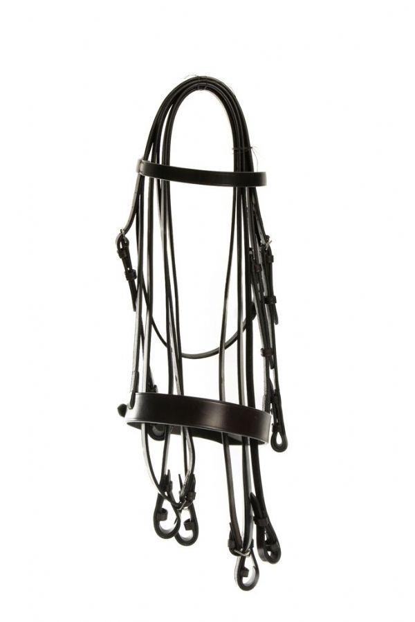 Bridle Bundle